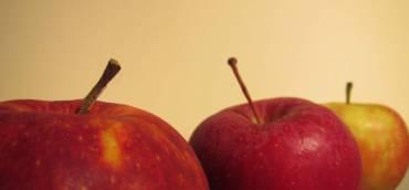 Der Sommer bringt uns frische Äpfel!